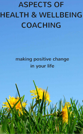 aspects of health and wellbeing, wellbeing, michael laffey life coach, wellbeing coach, laurel alexander, wellness, professionals, wellness professionals at work