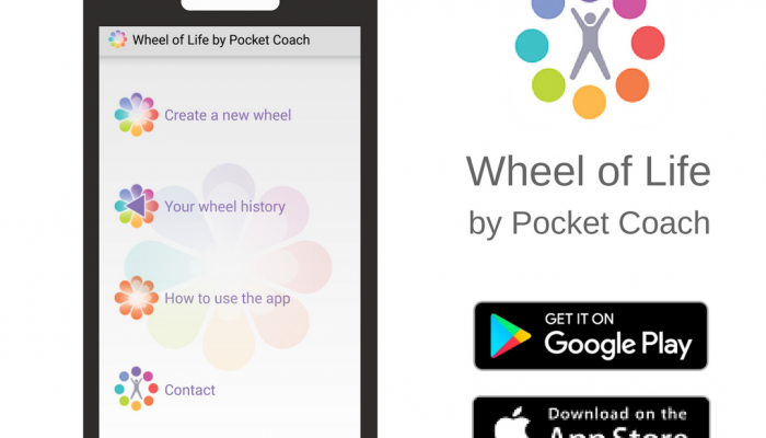 wheel of life, michael laffey, life coach, michael laffey life coach