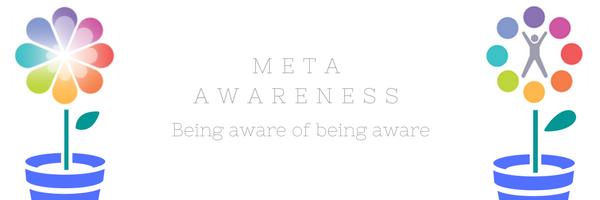 Meta Awareness
