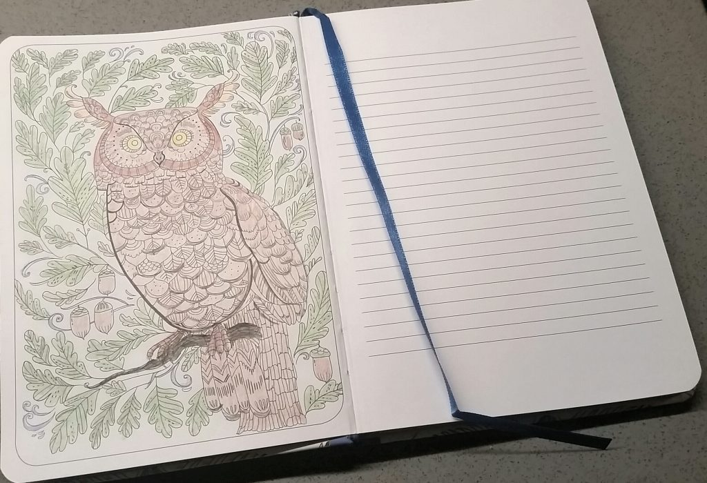 Colouring Journal